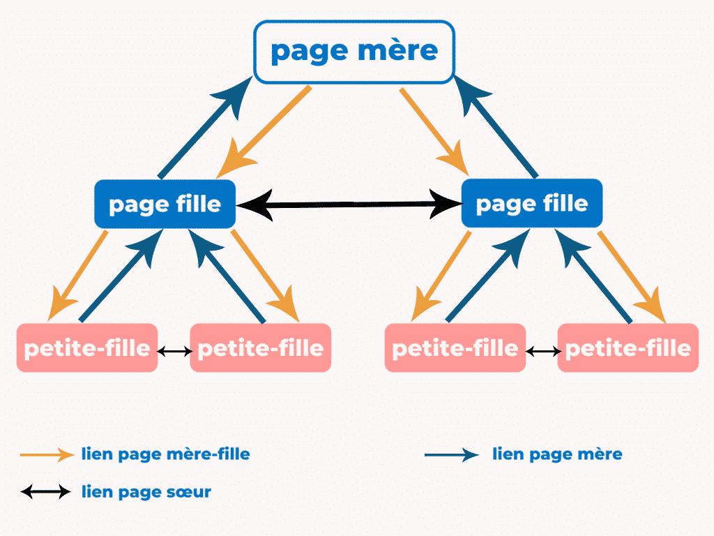 cocon-semantique-schema
